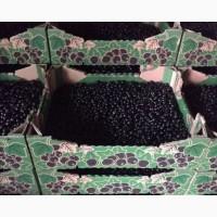 Продам чёрной смородины