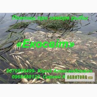 Помощь при заморе рыбы
