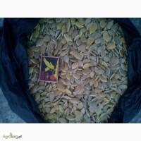 Продам семена стофунтовку
