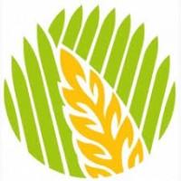 КУПИМ постоянно пшеницу