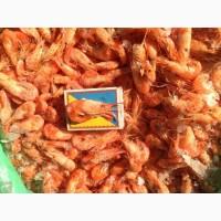 Креветка черноморская мелкая, крупная