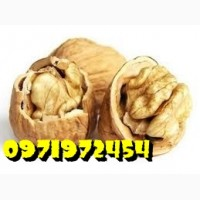 Продаём грецкий орех кругляк бойный