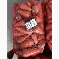 Продам морковь крупными обьёмами.ОПТОВАЯ ЦЕНА 4 грн/килограмм от 20-ти тонн