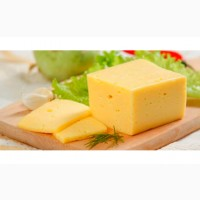 Твёрдый сыр (продукт)