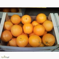 Апельсин с Испании
