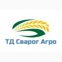 Засухоустойчивый гибрид кукурузы на силос Соколов 407 МВ ФАО 400