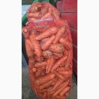 Оптом продам морковь некондиция