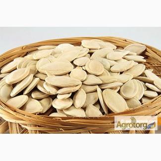 Семена тыквы покупаем