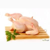 Курица тушки опт