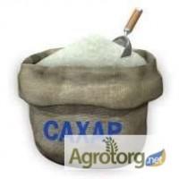 Винницкая обл. компания оптом продает сахар 4000 тонн, 2018 г. 3 кат. 11300 грн/т с НДС