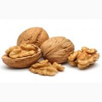 Куплю орех грецкий дорого