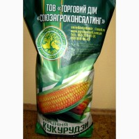 Семена кукурузы Пивиха, раннеспелая, ФАО 190