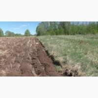 Набір земель (цілина) в Рівненській області 1000 - 10 000 га