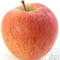 Яблоки Чемпион 65