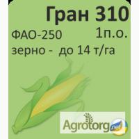 Продам гібрид кукурузи ГРАН 310 (урож.2018 р.)