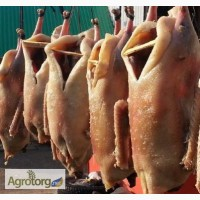 Продам мясо гусей к новому году