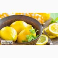 Супер предложение !!!!!!!Лимоны из Ливана
