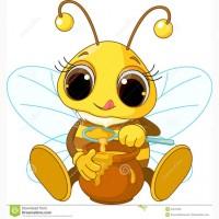 Покупаю мед оптом
