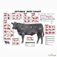 Продам говядину блочную на экспорт по частям или по сортам