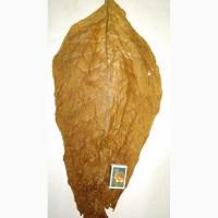 Продам табак ферментированный, нарезанный лапшой, хорошего качества, Мелитополь