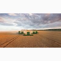 Збирання зернових та бобових культур (оренда комбайну John Deere)