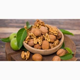 Продам орех грецкий в скорлупе