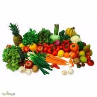Овощи фрукты оптом с базы фруктопия