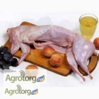 Продам мясо кролика и живым весом