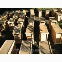 Мукачево 2018 Бджолопакети карпатської породи