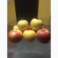 Продам яблоки оптом Киев киевская область и вся Украина