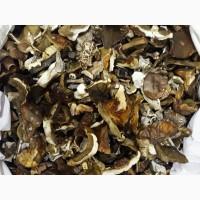 Продам білі гриби сушені