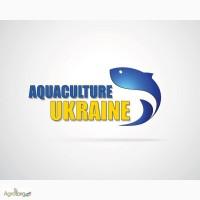 Реалізуемо зарибок осетрових видів риб