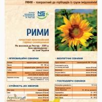 Гибрид подсолнечника под евролайтинг Рими (сербская селекция)