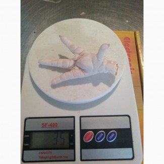 Замороженная куриная лапа класса А на экспорт / Frozen Chicken Paws Grade A for export