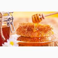 Продам мед майский, подсолнух, разнотравье, подсолнух