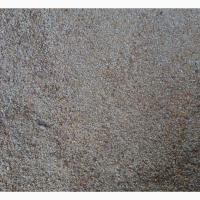 Закупаем отходы кукурузы (влажную кукурузу, не кондицию)