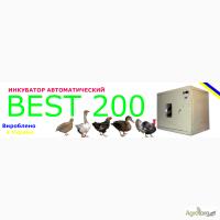 Инкубатор автоматический