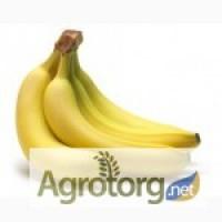 Купим бананы