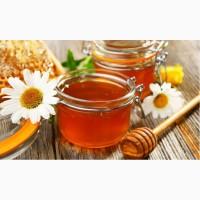 Продам оптом 820кг меду по ціні 50грн/кг