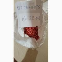 Продам семена ЛГ 2244 (кукурудза)