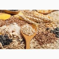 Купуємо зернові (ячмінь, овес, пшениця, кукурудза, горох, гречка)