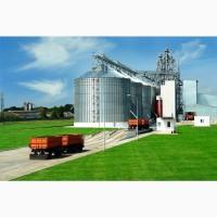 Підприємство на постійній основі закуповує оптом : зернові, бобові, масляничні
