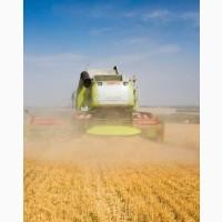 Уборка кукурузы сои подсолнечника соняшника льна Винница Бар Бершать Гайсин Гнивань