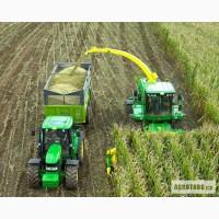 Продам насіння кукурудзи гiбрид Хмельницький