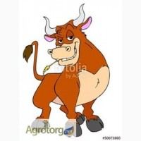 Куплю КРС(быки тёлки)баганов свиней