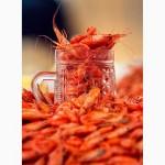 Продаем креветку черноморскую вялено-сушеную собственного производства