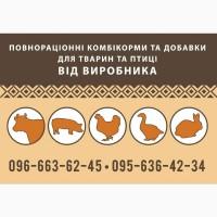 Продаем цыпля мясояичной породы и несушки заказуйте цена ниже рыночной