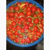 Продам соленые помидоры (сливка), солёные арбузы