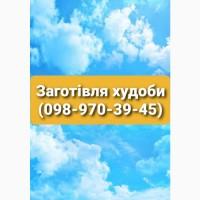 Закупка худоби від домашніх господарств)