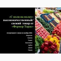 ПРОДАЕМ/ВЫРАЩИВАЕМ овощи сетевого качества в обьеме